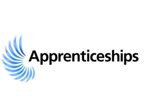 Year 10  - Introduction to Apprenticeships Video