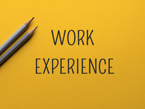 Companies Offering Work Experience