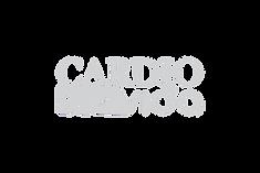 CARDIO VIDA CINZA.png
