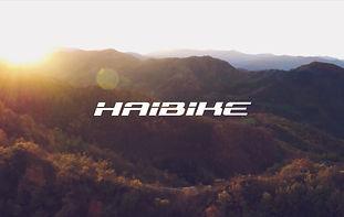 haibike_edited.jpg