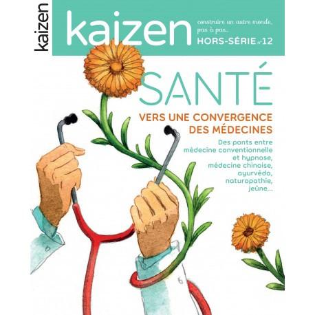 Kaizen Hors série 12