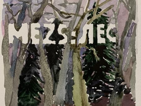 в Латвии запустили инстаграм-сериал по пьесе Полины Бородиной «Лес»