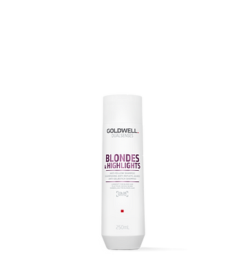 Goldwell Dualsenses Blondes&Highlights Shampoo