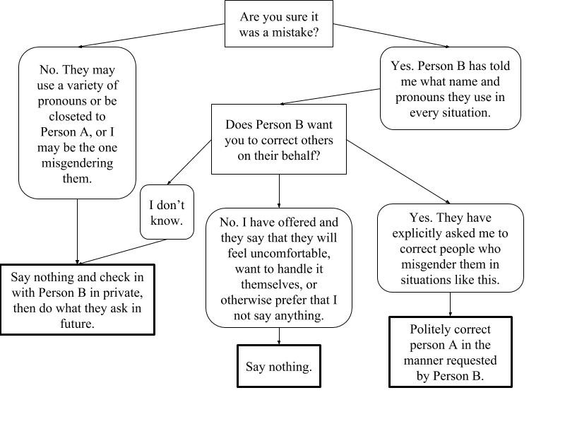 Flowchart describing what to do if a person misgenders someone around you
