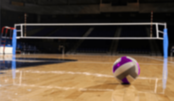 Volleyball-3.png