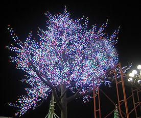 12528灯,58个216灯树支,7米仿真树彩色 (2).jpg