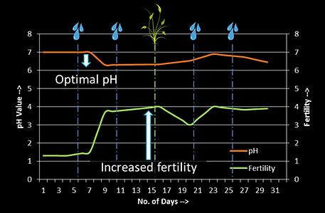 Fertility Graph.png