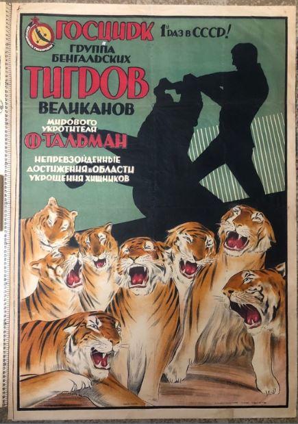 Группа бенгальских тигров