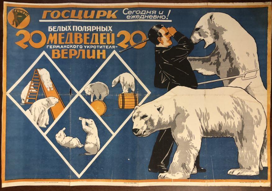 20 Белых полярных медведей