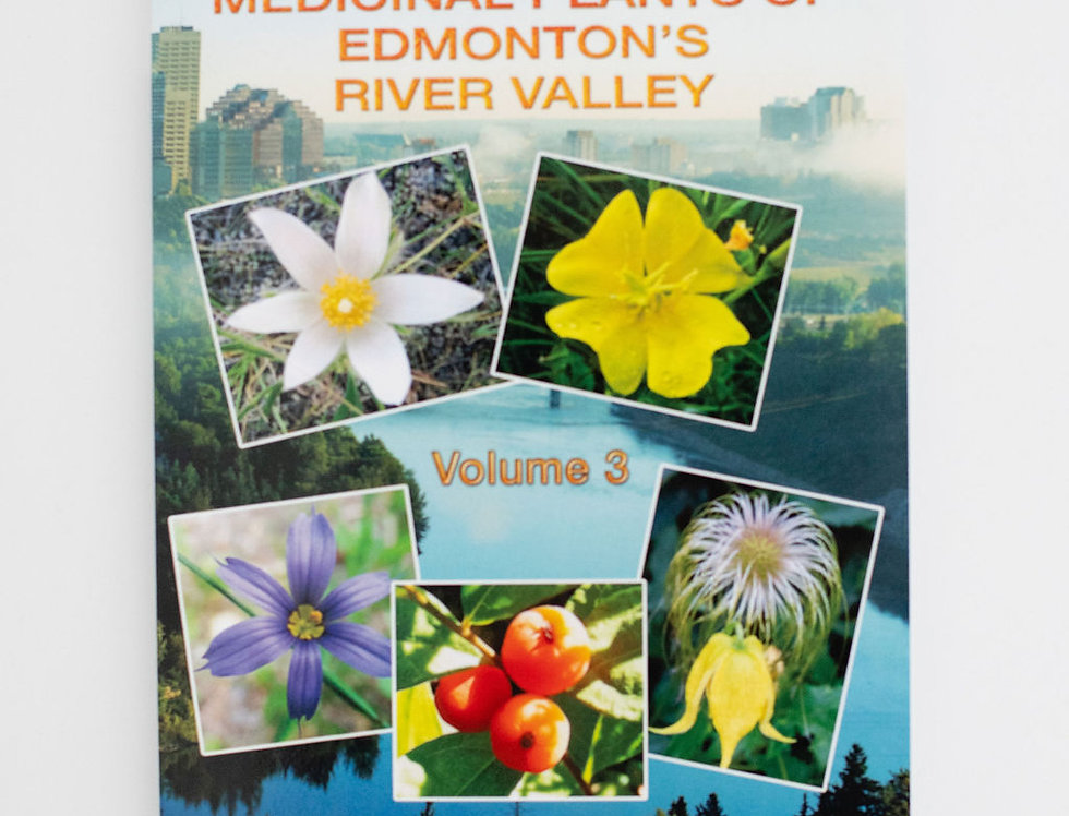 Medicinal Plants of Edmonton's River Valley by Robert Dale Rogers