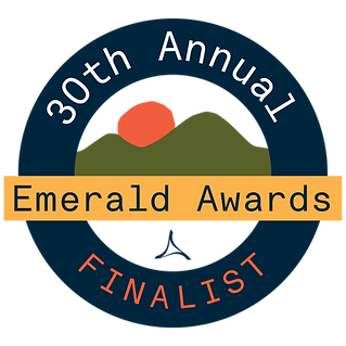 Emerald Award Finalist Logo (Colour) (1)