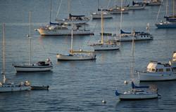 rows of boats no.2