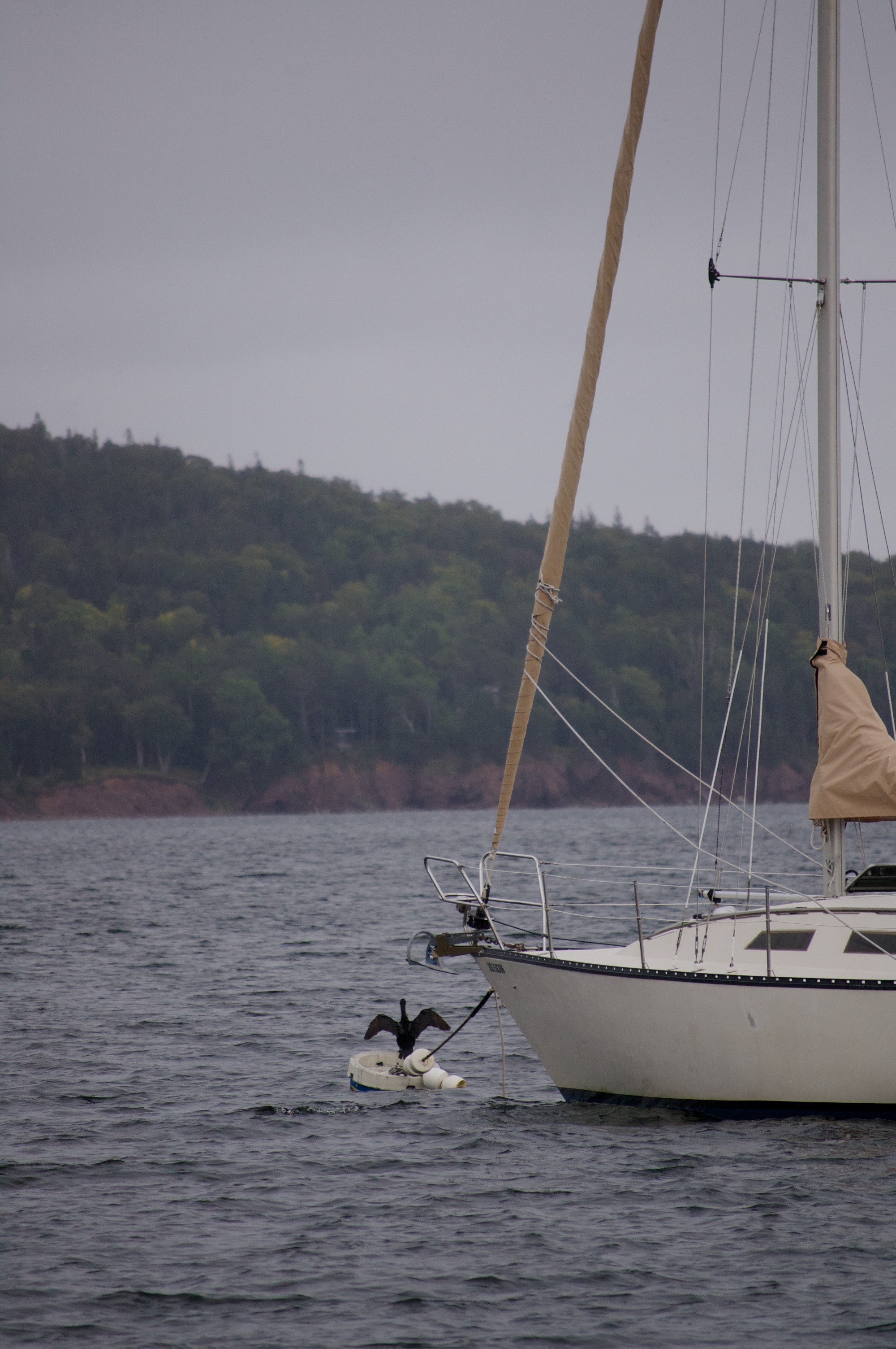 sailing past baddeck