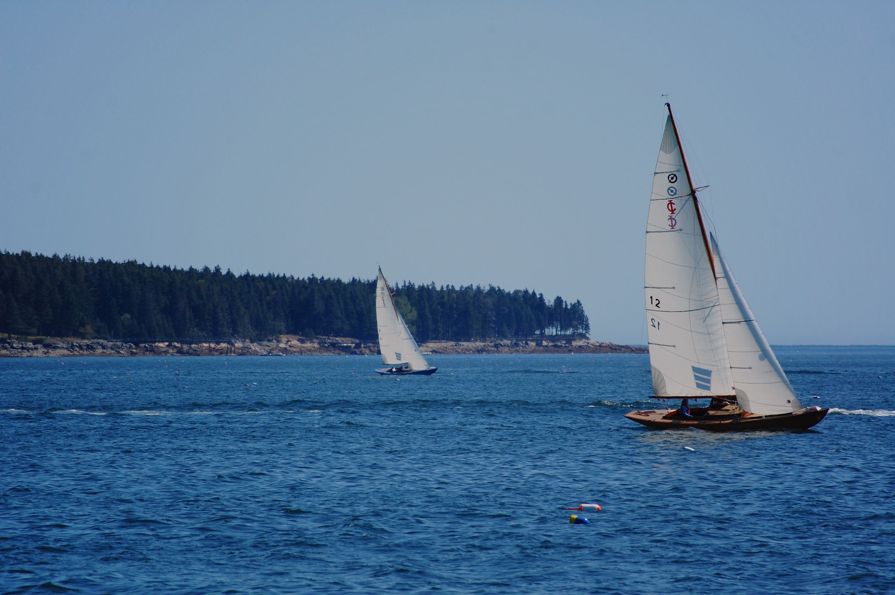 sailing along frenchman bay