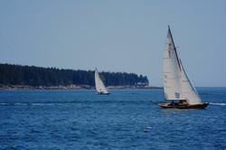sailing along frenchman bay
