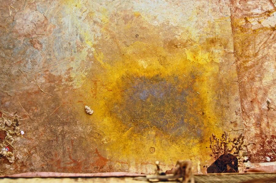 saffron stain