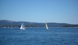 sailing along frenchman bay no.2
