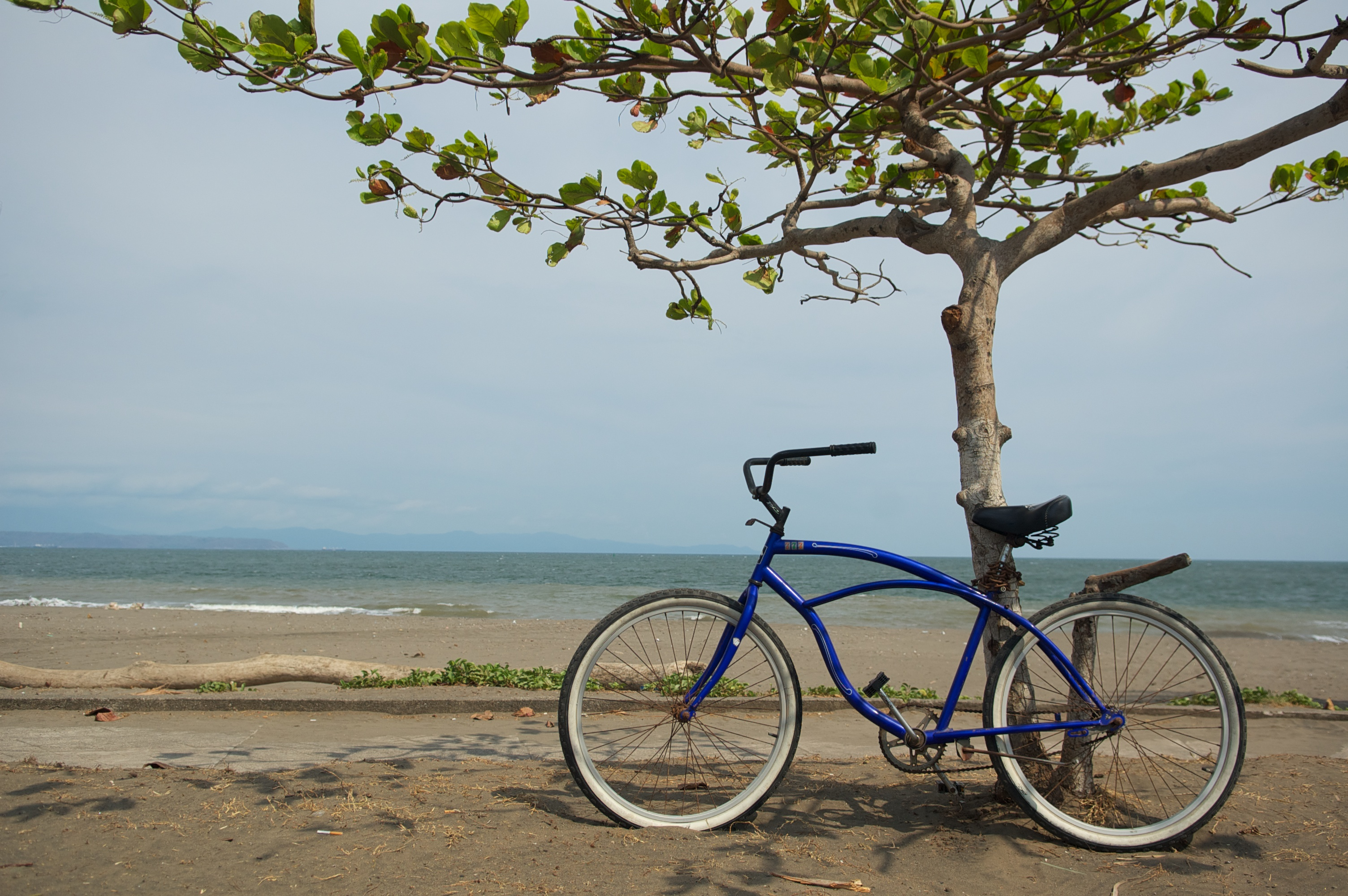 bicycle in waiting