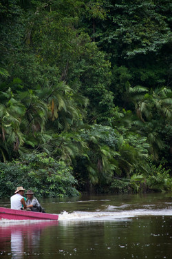 canoeing in tortuguera