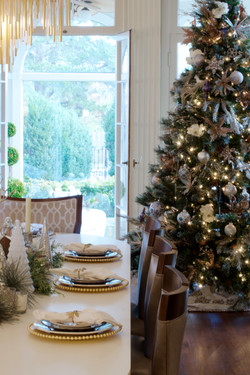 Maple Grove Christmas (small) 1