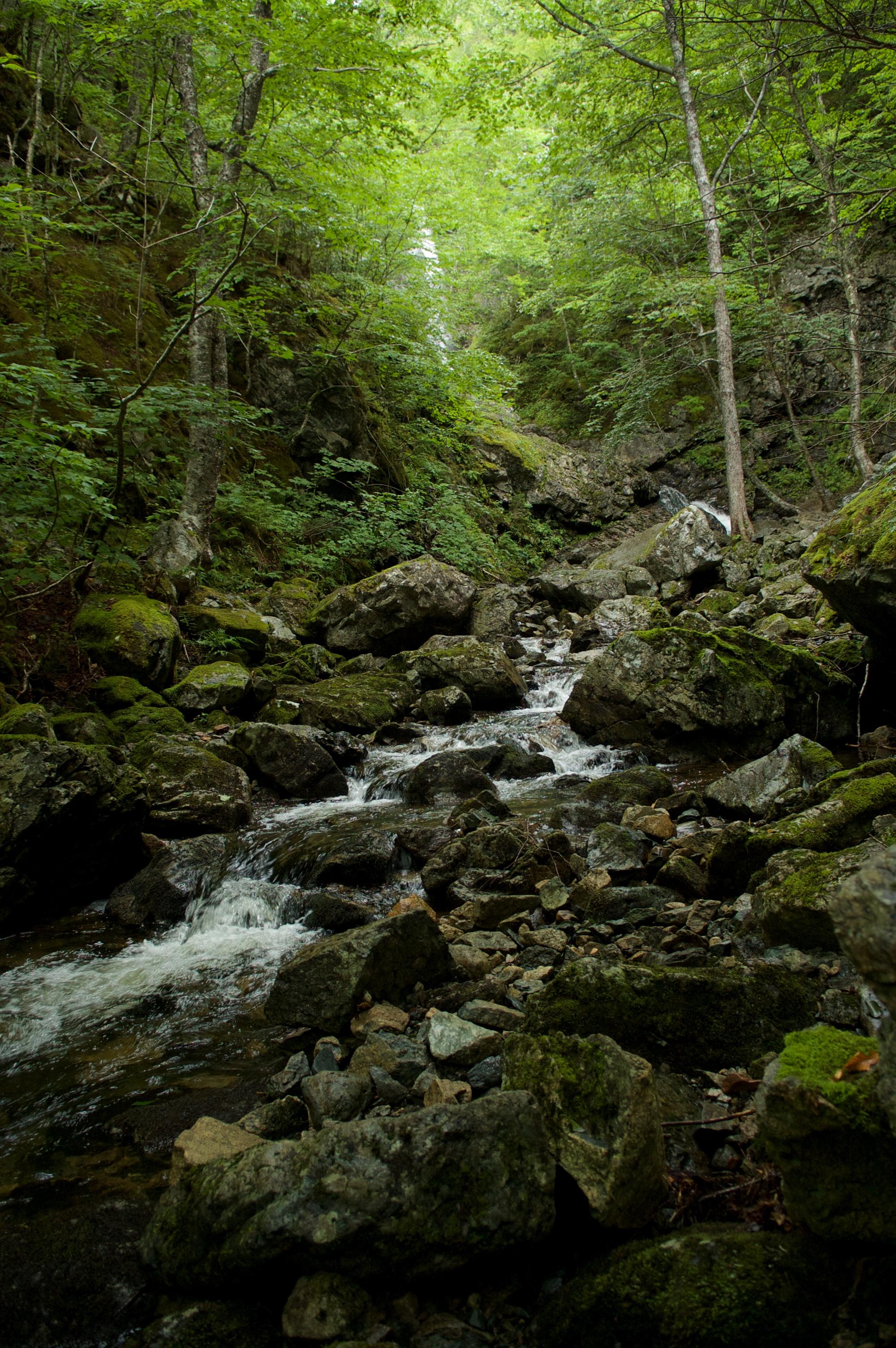 a waterfall hike