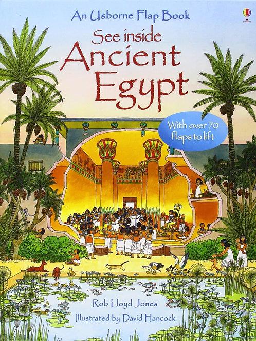 Usborne See Inside Ancient Egypt by Rob Lloyd Jones & David Hancock