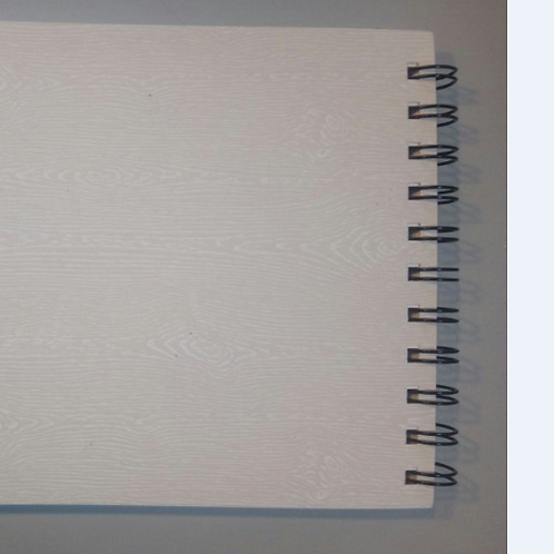 Блокнот для набросков .Формат 17 см х 25 см ,15 листов пл 300 гр торшон Гознак