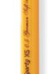 Ручка шариковая XS, пластиковая .цвет чернил синий. FLAIR