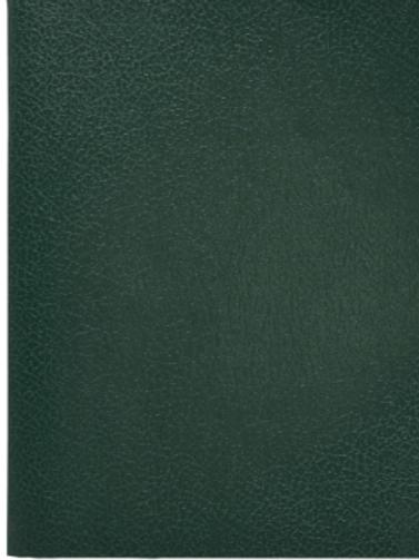 Тетрадь бумвинил А5, 48 л., скоба, офсет , клетка.цвет зеленый