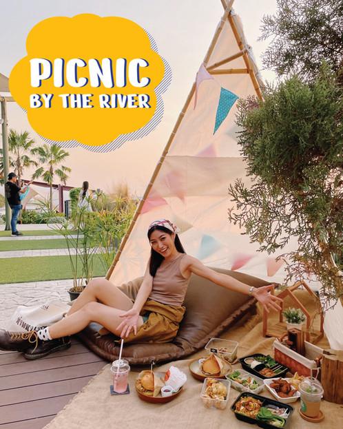 picnic .mp4