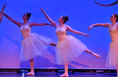 Sr Ballet - Belle.jpg