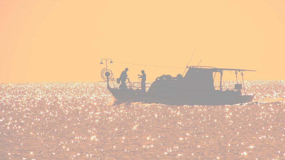 backlit-beach-boat-358423_edited.jpg