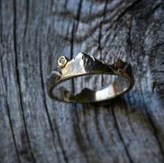 Verlobungsring aus Weißgold, Gold und einem Diamant
