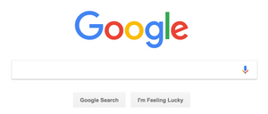 Google Search Homepage Screen