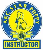 Star INSTRUCTORLogo-FINAL.jpg
