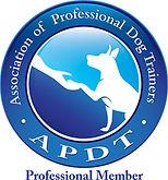 APDT_Prof_COLOR.jpg