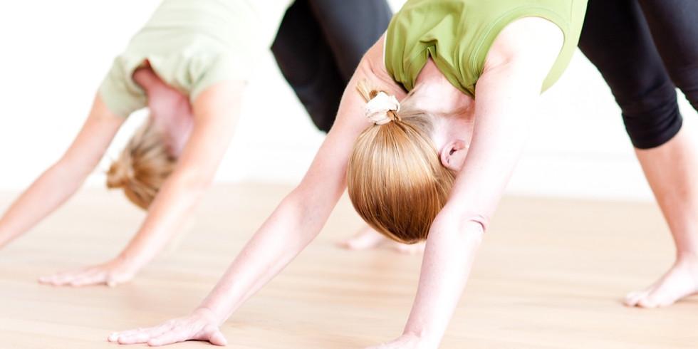 Faszien Yoga: Fokus Rücken & Beweglichkeit
