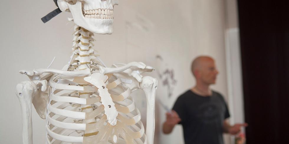Yin Yoga & Anatomie mit Markus Henning Giess
