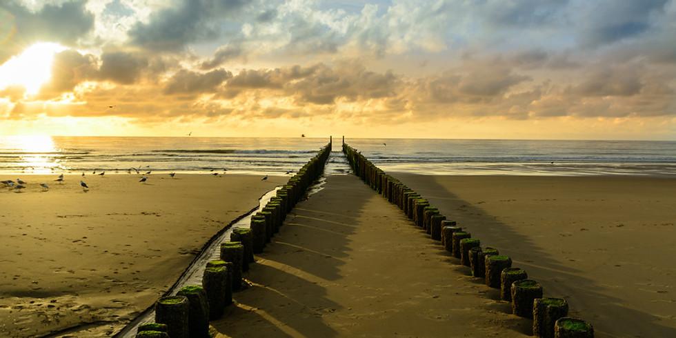 Ein Morgen am Meer