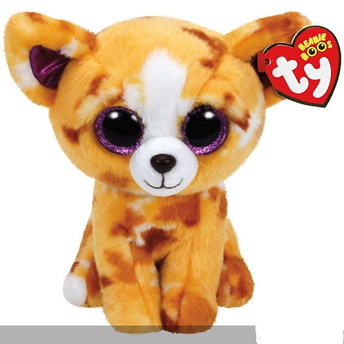 PABLO THE TAN CHIHUAHUA TY BEANIE BOOS