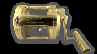 Albacore-130-2S_Oro.png