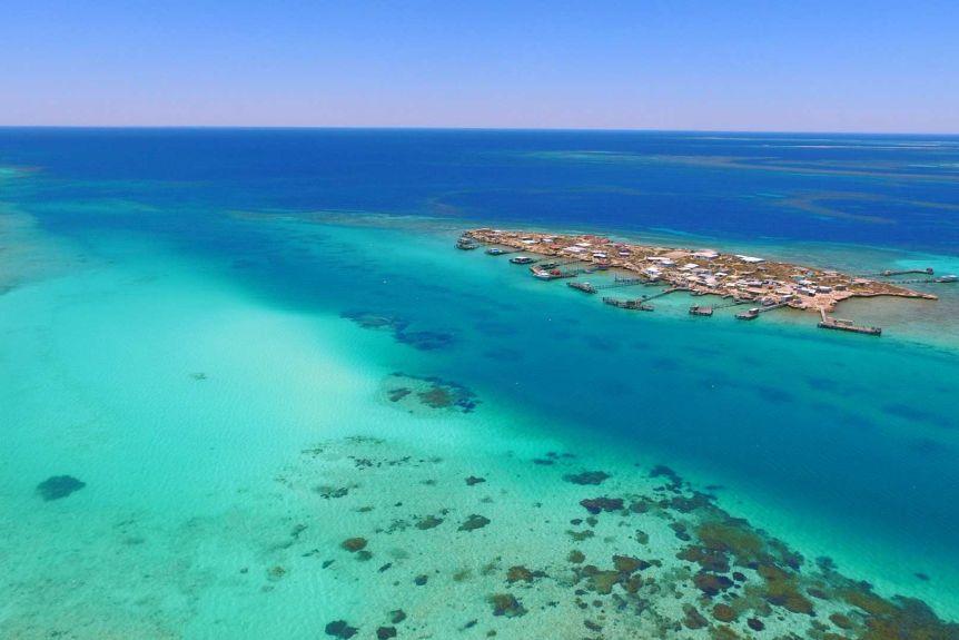 Abrolhos Island Life