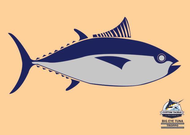 Big Eye Tuna custom tackle.jpg