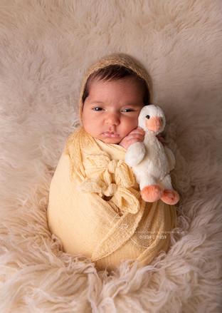 newborn-baby-girl-photography-potato-pos