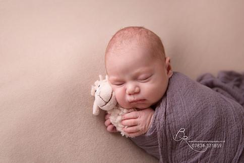 newborn-baby-boy-wrapped-blue-ribbon-pho