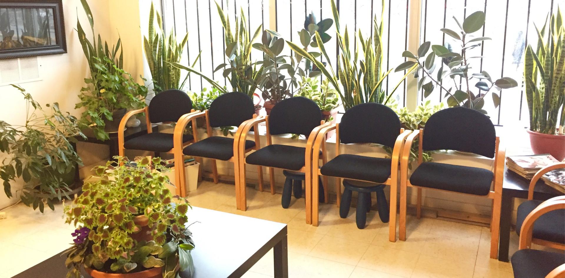 AMS plants.jpg