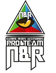 Logo ProTeamNyR