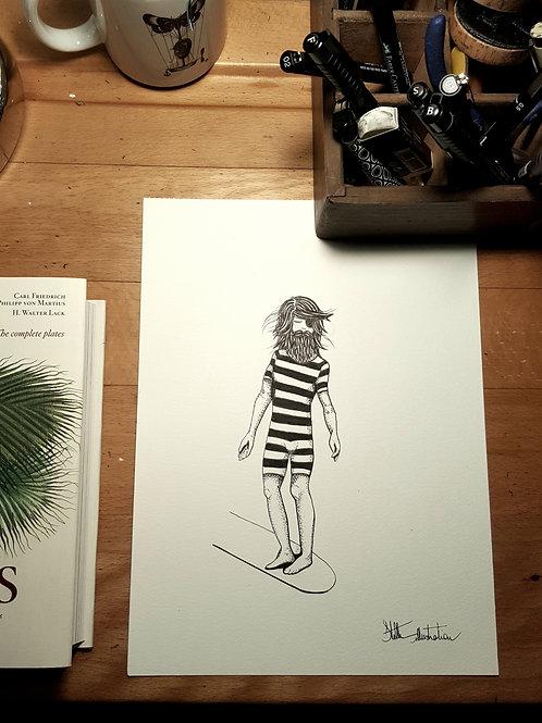 """""""il"""" de Stelle illustration"""