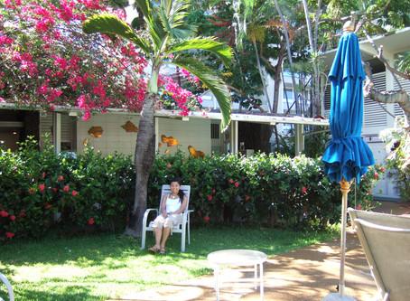 はじめまして& Aloha