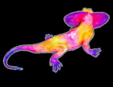 Thermal Lizard